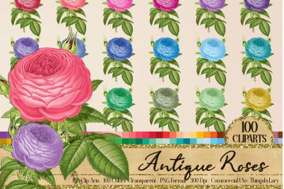 100 Antique Vintage Ephemera Wedding Rose Flower PNG Images