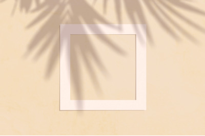 Flat lay copyspace with paper frame and palm shadow