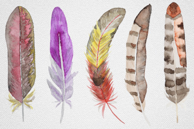 Feather set 11