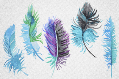 Feather set 12
