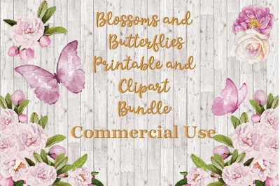 Butterflies and Blossoms Clipart Bundle. Commercial Use PNG and JPEG
