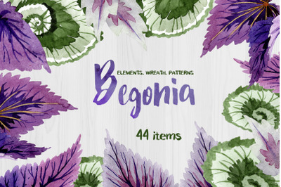 Decorative begonia purple watercolor png