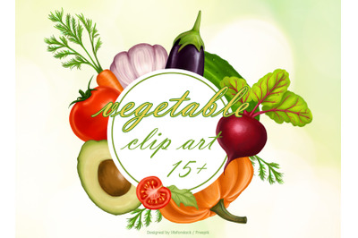 set of Illustration digital realistic vegetables  vegan
