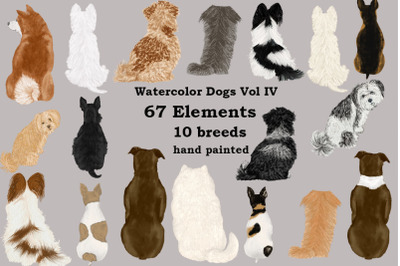 Dog Clipart, Dog breeds, Pet clipart,Puppies clipart Dog Png