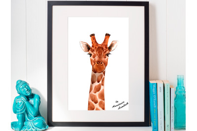 Giraffe, Lama and Ostrich Portraits (PNG+VECTOR)