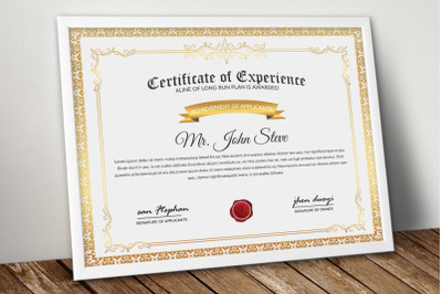 Professional Certificate Word Template