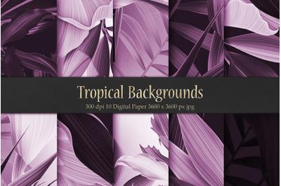 Purple Tropical Patterns