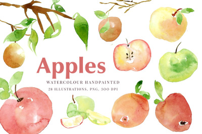 Autumn apples, green apples, branches, leaves Watercolour clipart