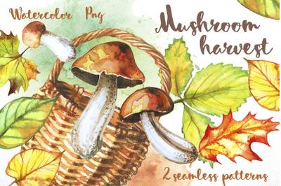 Mushroom harvest. Watercolor.
