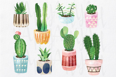 Watercolor Cactus Collections
