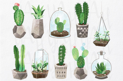 Cactus Watercolor Collections Set