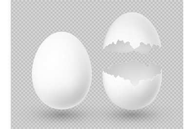 Realistic vector white eggs with whole and broken shell isolated