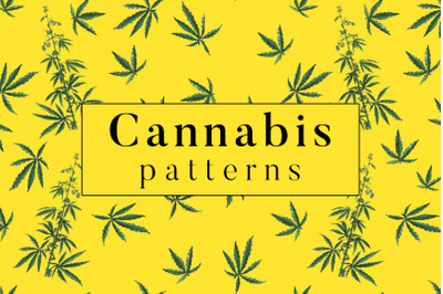 Cannabis Patterns