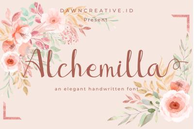 Alchemilla