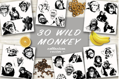 30 wild monkey silhouette vector