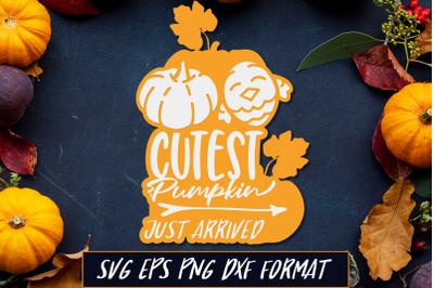 Cutest Pumpkin Just Arrived Thanksgiving SVG Cut File
