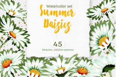 Watercolor daisy white flower pn