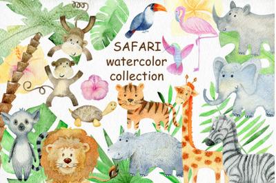 Safari watercolor collection.