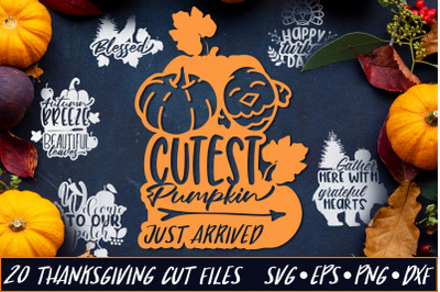 Thanksgiving SVG Quotes Bundle