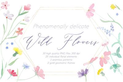 Phenomenally Delicate Wild Flowers