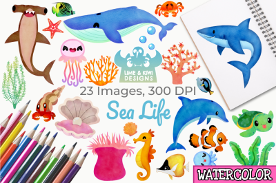 Sea Life Watercolor Clipart, Instant Download Vector Art