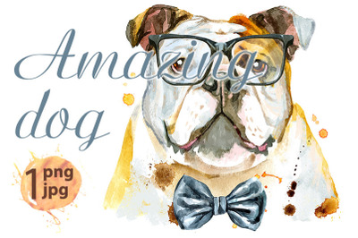 Watercolor portrait of bulldog with bow-tie and glasses