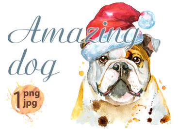 Watercolor portrait of bulldog with Santa hat