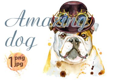 Watercolor portrait of bulldog with hat bowler and steampunk glasses