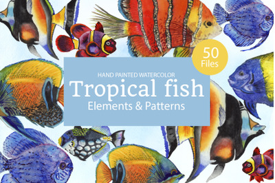 Tropical fish watercolor png