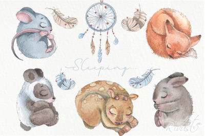 Boho watercolor sleeping animals