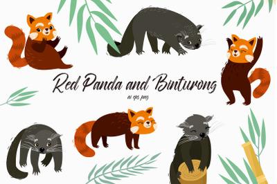 Red Panda and Binturong