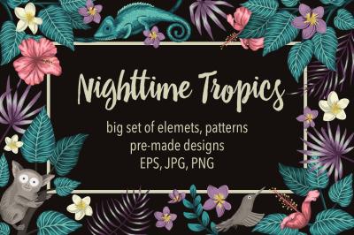 Nighttime Tropics