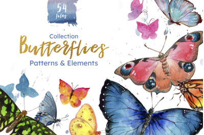Miracle of nature butterflies watercolor png