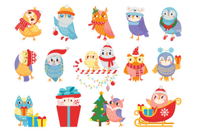 Winter owl. Cute christmas birds, owls in scarf and hat and bird masco