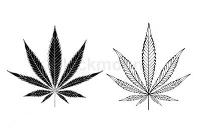 Monochrome Cannabis Leaves