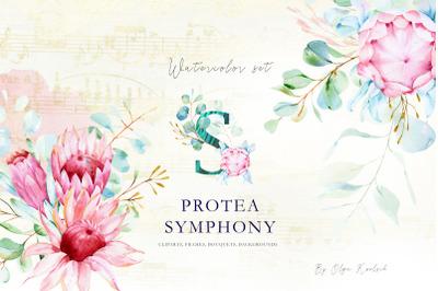 Watercolor Eucalyptus and Protea Set