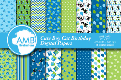 Birthday Boy Cat papers AMB-2673