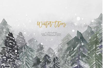 Winter Conifers clipart, Watercolor Forest clip art