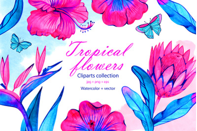 Watercolor neon tropical flowers