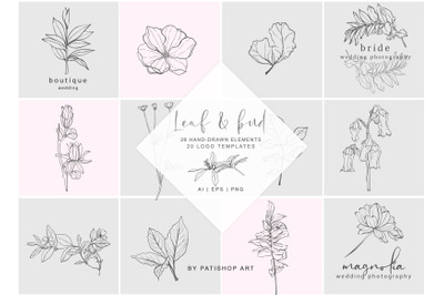 Hand-Drawn Botanical Logos & Illustrations