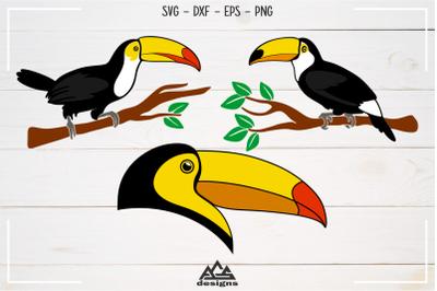 Toucan Bird Svg Design