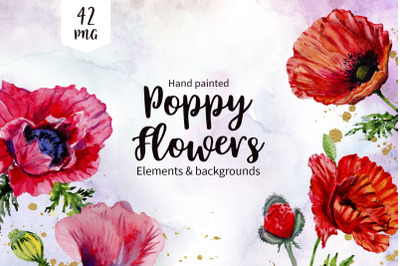 Poppy red flower watercolor png