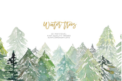 Conifer Forest Trees clipart, Fir Trees Clipart, Watercolor Pine trees