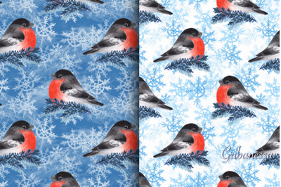 Winter patterns with birds and snowflakes