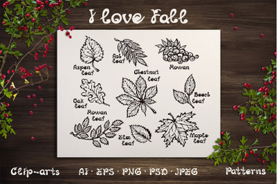 Hand drawn fall leaves and patterns