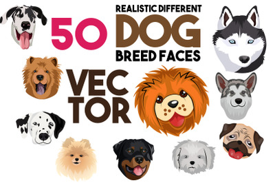 50 X Realistic Different Dog Breed Faces Illustration