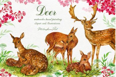 Deer watercolor clipart illustration. Deer Painting Animal Watercolor