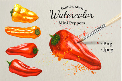 Mini Peppers. Hand drawn watercolor illustrations