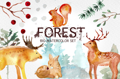 Winter Forest Watercolor Graphic Set.