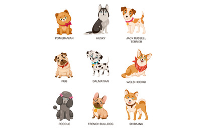 Cute puppies. Funny dogs of different breeds. Cartoon pomeranian, husk